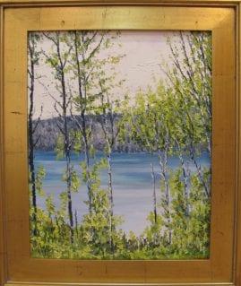 phelps lake summer